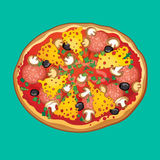 Pizza with salami, cheese mushrooms olives and herbs. vector illustration Royalty Free Stock Images