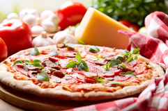 Pizza with salami, ham and vegetables Royalty Free Stock Photo