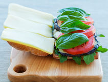 Pizza sandwich Royalty Free Stock Image