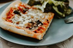 Pizza slice with tomato sauce, mozzarella cheese and champignon mushrooms on plate. With green salad royalty free stock images