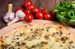 Pizza sottile con i funghi ed il formaggio fotografia stock libera da diritti