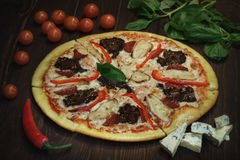 Pizza squisita Immagine Stock
