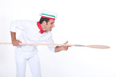 Pizza szef kuchni Obraz Stock