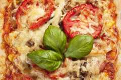 Pizza with tomatoes. Pizza with tomatoes on blue plate Stock Image