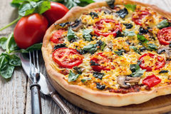 Pizza with tomatoes and cheese close up. Stock Images