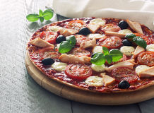 Pizza with tomatoes,chicken and mozzarella Stock Image