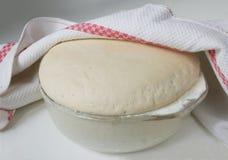 pizza tortowa Zdjęcie Stock