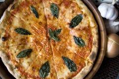 Pizza und Bestandteil Stockbild