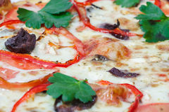 Pizza with vegetables and olives,Italian traditional cuisine, Italy, makro Stock Photos