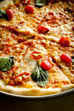 Pizza vegetariana Fotografia Stock