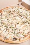 Pizza w pizzy pudełku Zdjęcie Stock