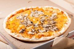 Pizza w pudełku obraz royalty free