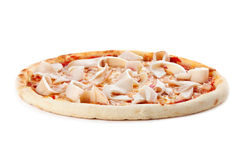 Pizza whth squidson. White background Stock Photos