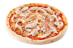Pizza whth squidson. White background Royalty Free Stock Images