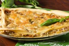 Pizza z mięsem Obraz Royalty Free