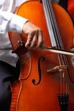 pizzicato виолончели Стоковые Изображения