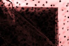 Pizzo rosa su fondo bianco Il dispendio e l'eleganza sono COM Immagine Stock