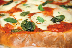 Pizzy margarita Fotografia Stock