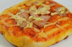 Pizzy polewy wieprzowiny chlebowa kiełbasa na naczyniu Obrazy Royalty Free