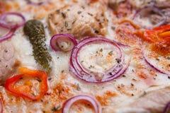 Pizzy tekstura, karmowy tło Zamyka up świezi piec pizz wi Zdjęcia Stock