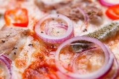 Pizzy tekstura, karmowy tło Zamyka up świezi piec pizz wi Obrazy Stock