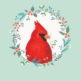 Pájaro del cardenal de la Navidad Fotos de archivo libres de regalías