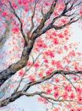 Pájaro hermoso en la ramificación floreciente Pintura de la acuarela Foto de archivo