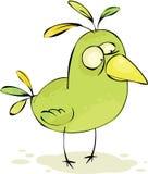 Pájaro loco verde Imagenes de archivo