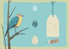 Pájaro y huevos Foto de archivo libre de regalías