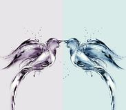 Pájaros de agua coloreados del amor Fotografía de archivo