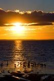 Pájaros de la puesta del sol Foto de archivo libre de regalías