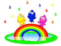 Pájaros y arco iris Imagen de archivo libre de regalías