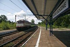 Pkp, polish state railways. Still working locomotive of pkp, polist state railways Royalty Free Stock Image