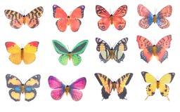 Plástico da borboleta fotografia de stock royalty free