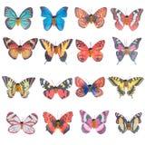 Plástico da borboleta imagem de stock