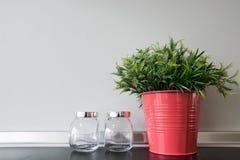 Plástico de la hierba en pote Imagen de archivo libre de regalías
