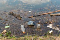 Plástico e outros restos no lago O conceito da poluição de água Problemas da proteção ambiental imagem de stock royalty free