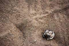 Plástico queimado na areia com um traço de sapatas humanas fotos de stock royalty free