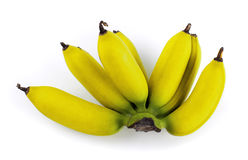 Plátano Fotografía de archivo libre de regalías