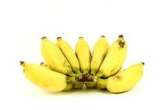 Plátano cultivado maduro Foto de archivo libre de regalías