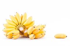 Plátano de señora Finger y mano de plátanos de oro en la comida sana de la fruta de Pisang Mas Banana del fondo blanco aislada Foto de archivo libre de regalías