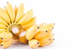 Plátano de señora Finger y mano de plátanos de oro en la comida sana de la fruta de Pisang Mas Banana del fondo blanco aislada Imagenes de archivo