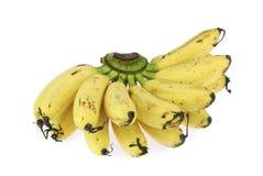 Plátano delicado fresco en el fondo blanco Imágenes de archivo libres de regalías