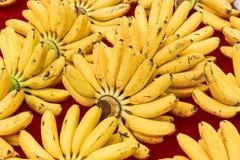 Plátano fresco Imágenes de archivo libres de regalías