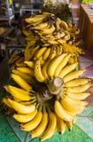 Plátano maduro Imágenes de archivo libres de regalías