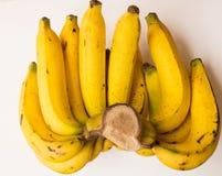 Plátano orgánico amarillo Foto de archivo
