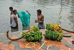 Plátano para la adoración Fotografía de archivo libre de regalías