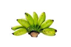 Plátano sin procesar Fotos de archivo