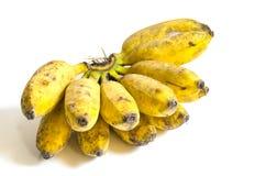 Plátano tailandés amarillo aislado Imágenes de archivo libres de regalías