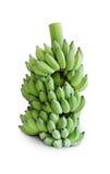 Plátano verde Foto de archivo